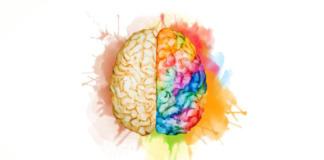 Neuromarketing brain.
